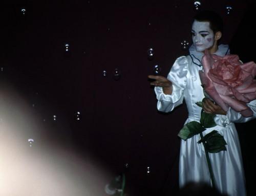 Studium der Pantomime